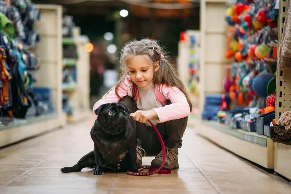 Pige med hund i dyrehandel